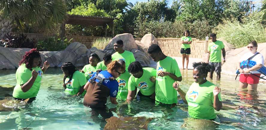 SeaWorld San Antonio Hosts SYF Next Generation Program for Hands-On Learning