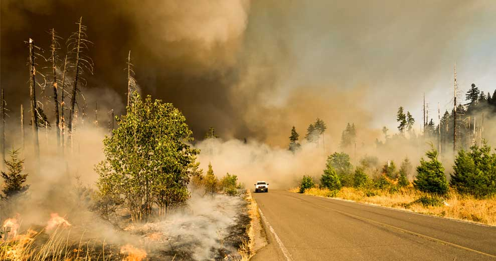 Paradise, California Members: Still Helping in the Wake of Forest Fires